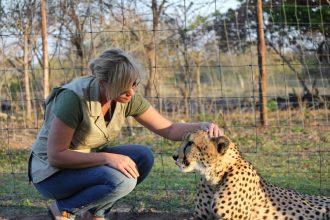 cheetah-interaction